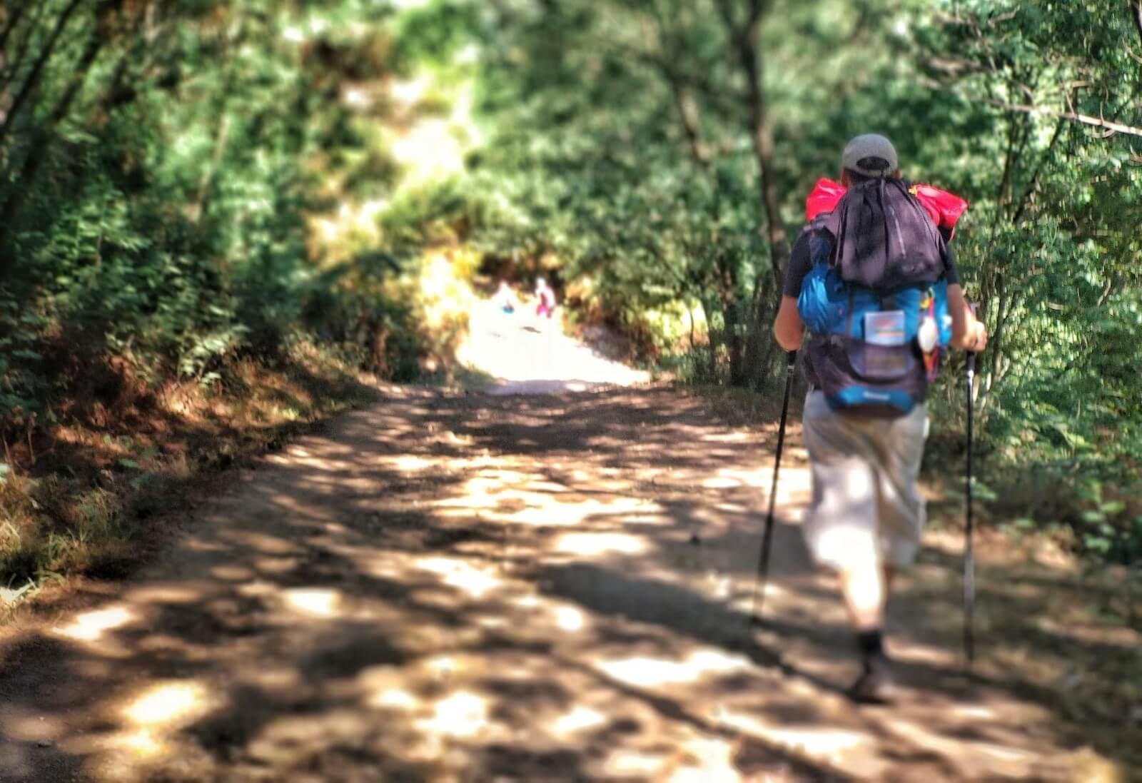 Blog del Camino