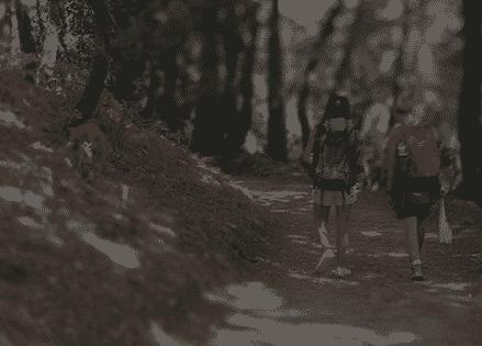 Camino<br /> francés