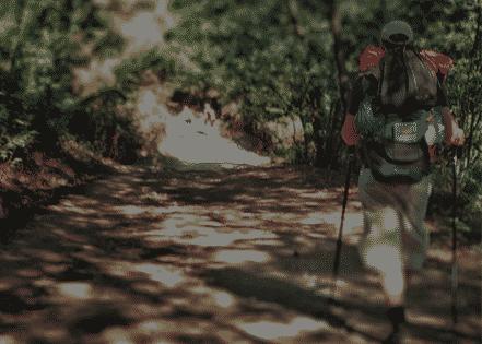 Camino<br /> portugués